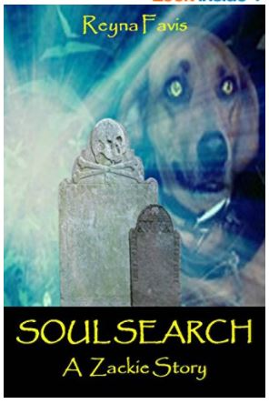 soul search cover